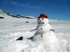 Летний снеговик. Подножие Ключевского вулкана