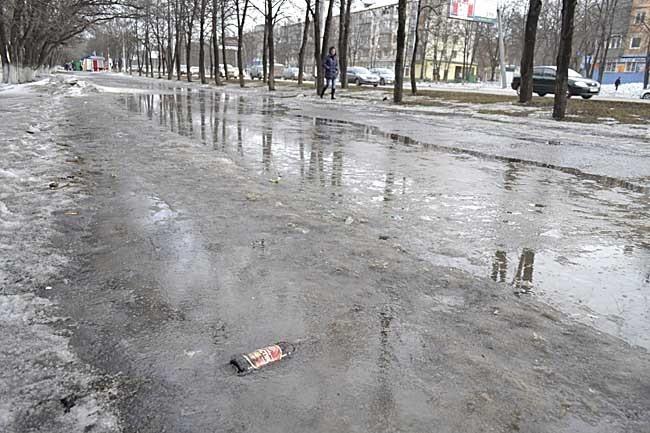 Некоторые бутылки, пачки от сигарет, шприцы за зиму вмерзают в лед