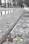 Весной в Кемерове оттаивает все, что ели и пили кемеровчане зимой. Мусор коммунальщики собирают вяло