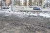 Академики когда-нибудь ответят нам, откуда в Кемерове столько грязи. А огородники возьмут ее в оборот и высадят в нее картошку. Наконец, кемеровская грязь начнет приносить пользу