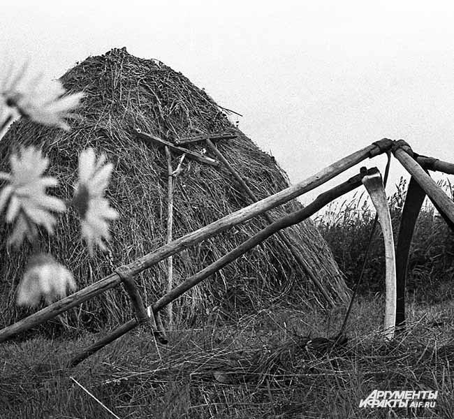 1968 г. Село Тальжино. Тальжинский стог