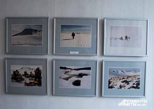 Новокузнецк. Фотовыставка «Человек и природа»