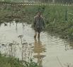 На Яйском зигзаге грязи было по колено