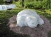 «Черепаха» в Кузбасском парке на проспекте Химиков. Пока самая новая кемеровская  скульптура.