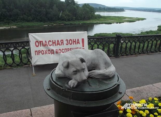 Памятник бездомной собаке на набережной реки Томь