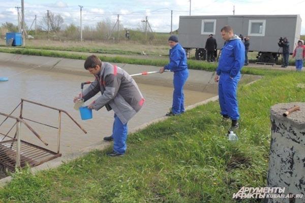 Краснодарские ученые выпустили в реку Кубань молодь осетровых
