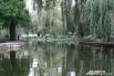 Пруд в парке «Городской сад»