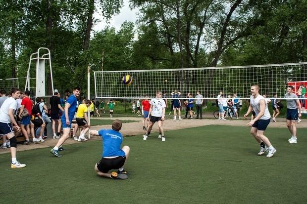 Волейбол оказался самым популярным видом спорта