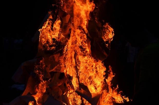 На день Естественных наук был сожжён кролик