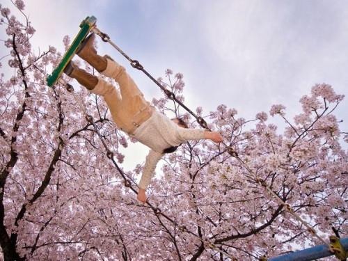 Я часто наблюдала эту черту у японцев, очень близкую и мне – способность удивляться и радоваться окружающим вещам.