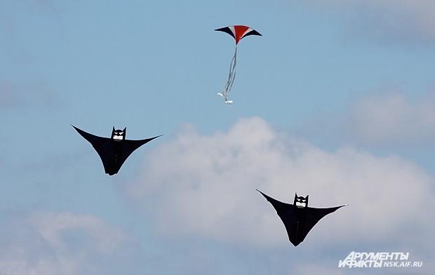 Кроме того, прикоснуться к небу могли в тот день все желающие, запустив воздушного змея, модель планера или надувной самолётик.