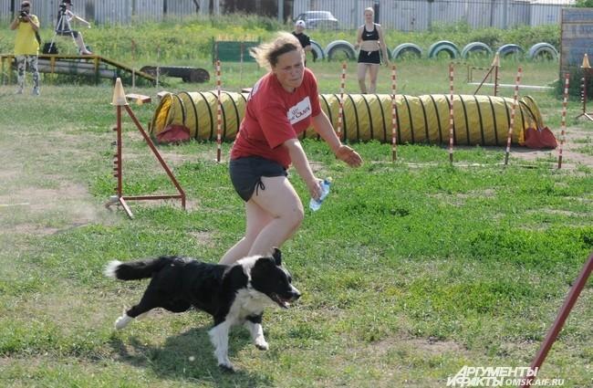 Собака начинала от стартовой линии и руководимая хэндлером бежала, проходя все препятствия по порядку.