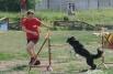 Важно, чтобы старалась не только собака, но и её партнер.