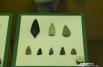 Все эти находки были обнаружены на территории Омской области.