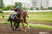 Отметим, что 40 из 136 лошадей-участников были представлены омскими заводчиками.