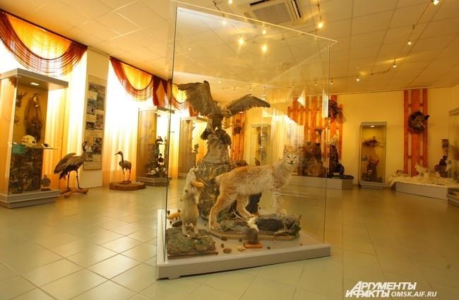 Среди экспонатов, представленных на выставке, – предметы из коллекции древнего и современного оружия, чучела промысловых зверей и птиц, пушных зверей, охотничьи трофеи, в том числе головы животных и коллекции рогов.
