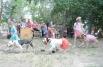 Выставка беспородных собак прошла на дрессировочной площадке стадиона «Динамо».