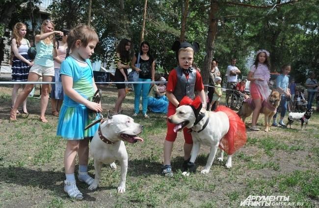 Организаторами этого мероприятия стали областной центр спортивно-служебного собаководства и благотворительный центр помощи детям «Радуга».