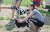 Собакам предстояло преодолеть множество препятствий, такие как горки, туннели, качели, а также прыжки в длину, прыжки через забор, двойной или тройной прыжок.