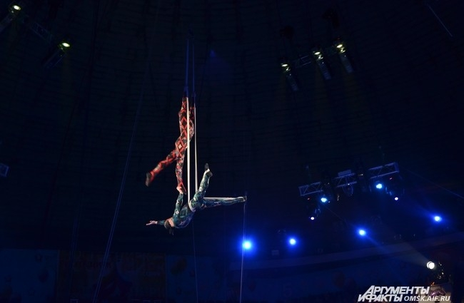 Цирк VITALI.