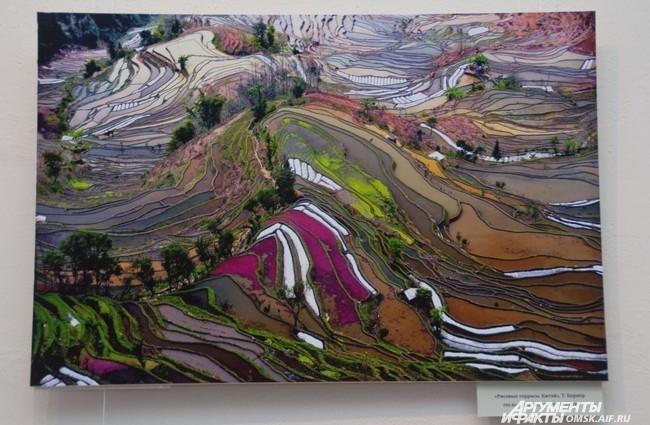 «Рисовые террасы. Китай», Т. Борнер.