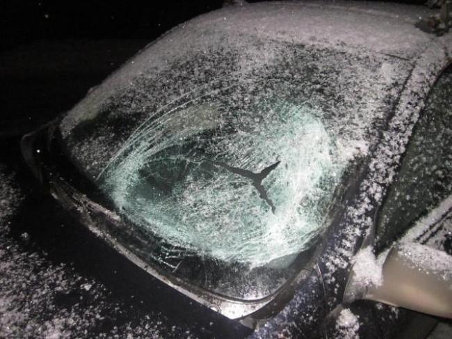 В Свердловском  районе на автодороге «Пермь - Н.Ляды» водитель автомобиля ВАЗ111-83 не справился с управлением и сбил двух пешеходов, стоящих на обочине проезжей части. После этого он столкнулся со стоящим там же автомобилем ВАЗ-2107. В результате аварии