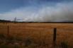 Лесные пожары в тасмании