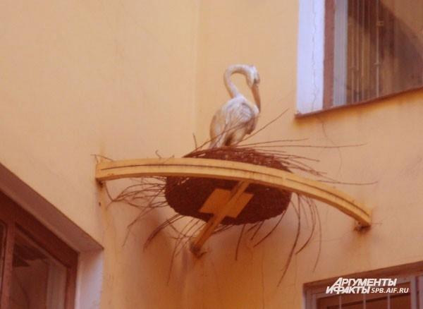 Птичий дворик (Невский пр., д.11) В этом дворе в самом центре города свил гнездо аист, поет соловей, а орел следит за порядком. Цель размещения здесь птиц – показать, что в неуютном старом дворе-колодце может царить атмосфера гармонии: во дворе царит чис