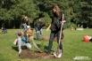 Студенты Лесотехнического университета принимали участие в посадке деревьев
