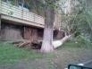 Упал тополь возле дома №8 по Чехова (пос. Солнечный, Ленинский район)