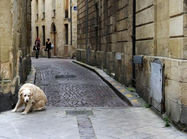 На улицах Бордо.