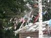 На деревья подвязывали цветные лоскутки и угощения для вороны, чтобы задобрить ворону, известную любительницу всего яркого и блестящего.