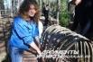 Рекоструируя древнюю печь