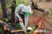Создание археологической лопатки с коротки черенком