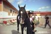 Руслан Ниязов: «Первый раз в Ханты-Мансийске. Занял вот первое место на своей лошади по кличке Тост. Хорошо выступил, без единой ошибки. Все здесь нравится: и сам город, и люди приветливые и организация соревнований на высшем уровне»