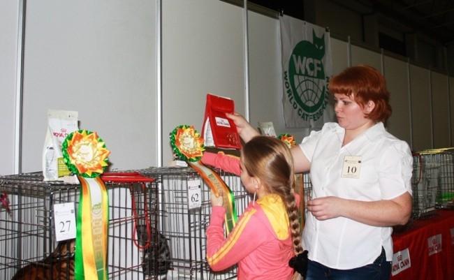 Под вечер началась торжественная часть. 10 кошек получили высшие награды и лакомство от спонсора.