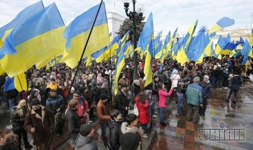 Сторонники власти держат флаги Украины