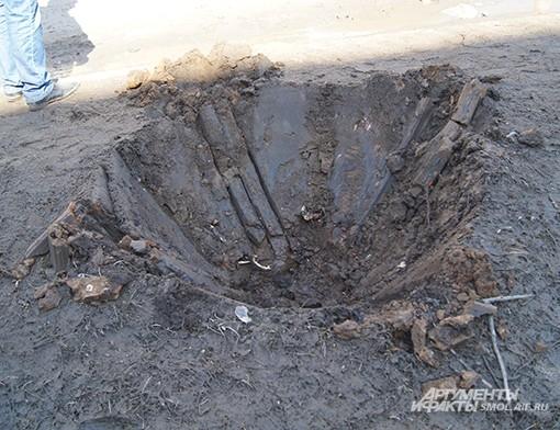 Было дерево - осталась яма