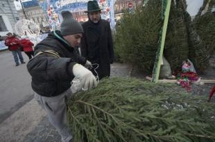 Ёлочные базары откроются в Челябинске 18 декабря
