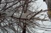Лишь бы деревья под тяжестью снега не начали падать
