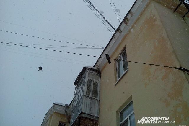 В Волгоград пришла настоящая зима