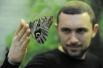 Ростовчане непринужденно общаются с бабочками