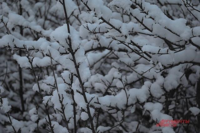 Как видно снега «небесной канцелярии» было совсем не жалко