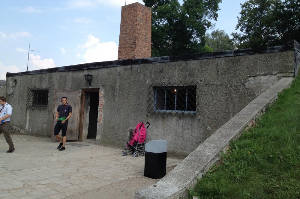 Строительство лагеря Аушвиц 2 началось в октябре 1941 года, а в эксплуатацию он был сдан в 1942-м. Здесь были сосредоточены цыганский лагерь, мужской карантинный и мужской больничный лагеря, а также семейные еврейские лагеря.