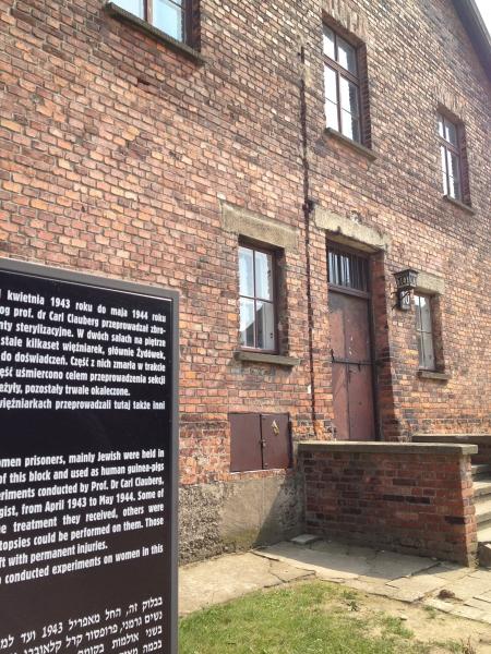 Основным корпусом концлагеря был Аушвиц 2 (также известен как Биркенау, или Бжезинка). Именно в его стенах погибла большая часть узников Освенцима – более миллиона человек.