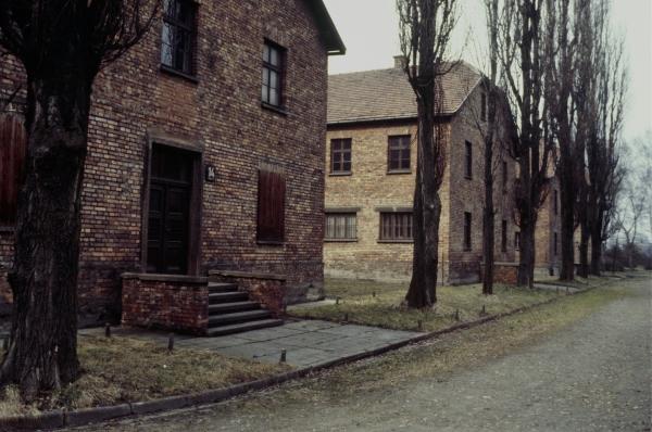 Сейчас польские власти поддерживают это место в качестве памятника, а 27 января, день освобождения Освенцима, является официальным днём памяти жертв Холокоста.