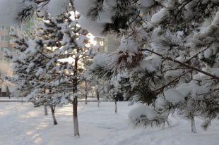 Синоптики ожидают сегодня в Челябинской области слабые метели