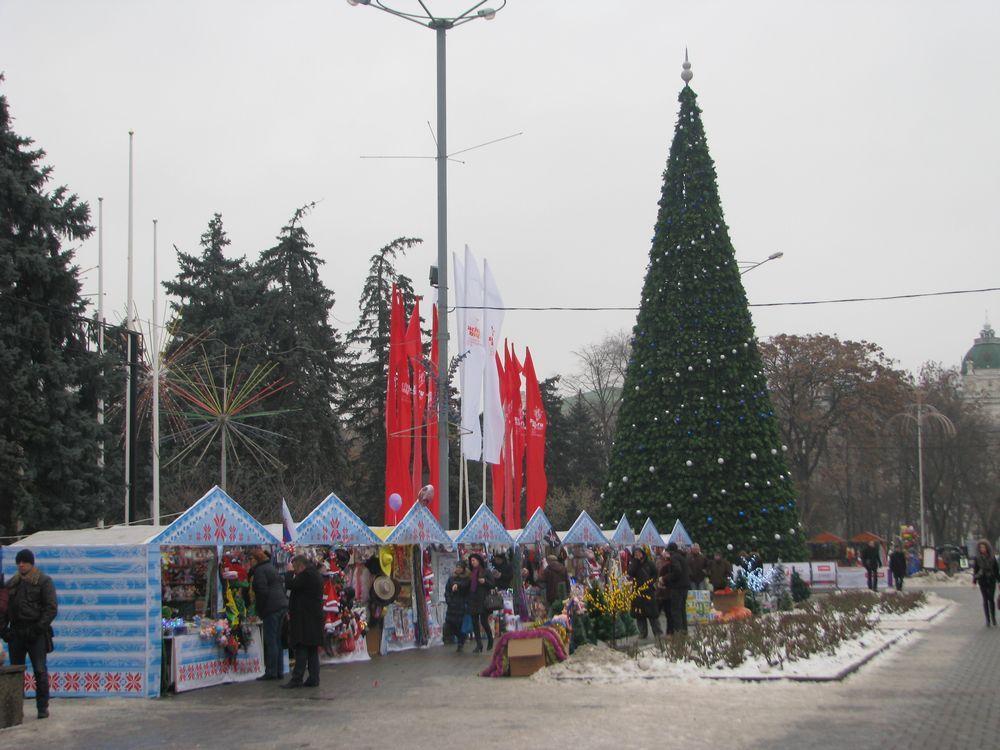 На улице Большой Садовой перед входом в парк имени М. Горького установили 20-метровую ёлку.