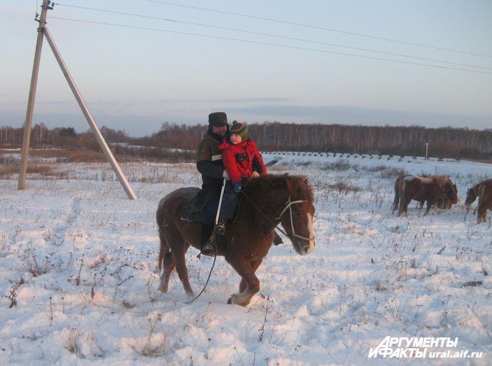 Лошади очень дружелюбны к детям и, везя ребёнка, никогда не позволят себе вольности, которыми испытывают взрослых