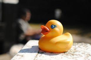В Челябинской области ребенок отравился китайской игрушкой